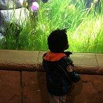 Long Island Aquarium & Exhibition Center