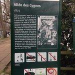 Foto de Ile des Cygnes (Isle of the Swans)