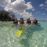 Snorkeling with the sea turtles, starfish and sea urchins