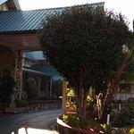 Foto de Pinewood Hotel