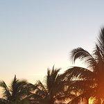Landscape - Akumal Bay Beach & Wellness Resort Photo