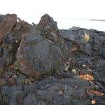 Volcanic rock to climb