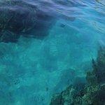 Foto de Honaunau Bay