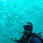 Roctopus Dive Foto