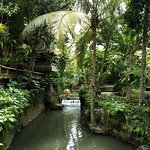 Tropical landscape and river in resort