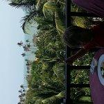 Photo of Lotus Mui Ne Resort & Spa