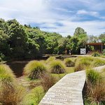 Part of garden walk - boardwalk around a small lake.