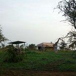 Foto de Serengeti Wildcamp