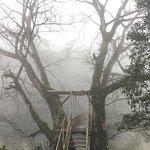 Nhà Nghỉ Cầu Mây