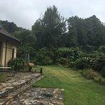 Photo of Treetops Lodge & Estate