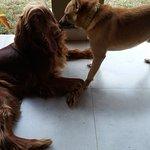 Skittles & Ginger!