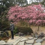 Jonangu Shrine Photo