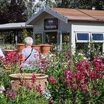 Expert gardening advice, a 5 year hardy plant guarantee and wonderful range of seasonal plants