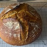 Baking Course  Results