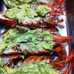 Fantastic Lobsters!