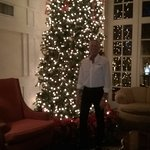 Beautiful Christmas tree at the Terrace Grille