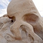 Creepy Skull Rock in Joshua Tree N.P.