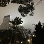 Photo of Kowloon Park