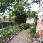 uno dei giardini interni