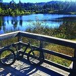 Birdie Lake