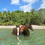Nuku-Hiva à cheval