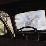 Rusted Ford Trucks - stories to tell