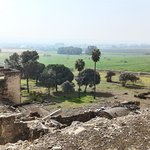 Foto de Conjunto Arqueológico Madinat Al-Zahra