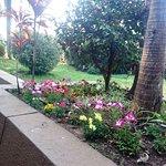 Photo de Hotel ACA Santo Tome