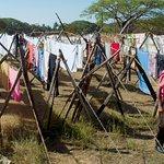 Drying Laundry Cochin