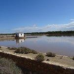 Photo of Parque Natural de Ses Salines