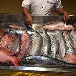 Fresh Sea food Counter-3
