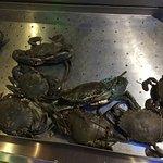 Fresh Sea food Counter-4