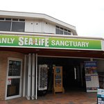 Photo of Manly Sea Life Sanctuary