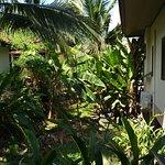 Photo de Thongtakian Resort