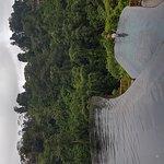 20170309_163702_large.jpg