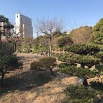 Photo of Sumida Park