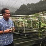 Jim in the shade house discussing the process of growing the orchids that produce the vanilla be