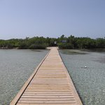 The dock at Guilligan Island
