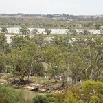 Overlooking the Murray River from the Cafe