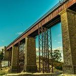 Taradale Viaduct Foto