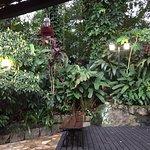 Foto de Aratinga Inn