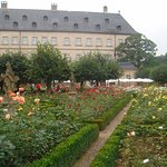 Photo of Rose Garden at the New Residenz
