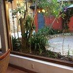 Vista del Comedor a Jardin