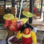 """Our parrot with a """"Whole Lotta Love""""!!"""