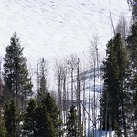 Foto de Vail Marriott Mountain Resort