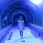 Photo de Hurghada Grand Aquarium