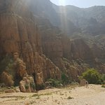 Photo of Oman Day Tours