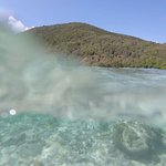 Snorkeling in St John