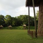 Foto de Archaeological Park and Ruins of Quirigua
