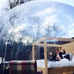 Bubble Dome.... amazing!
